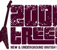 2000 Trees Festival Upcote Farm, Cheltenham