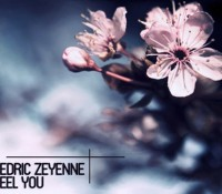 Cedric Zeyenne – Feel You