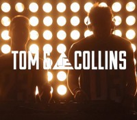 Meet Tom & Collins